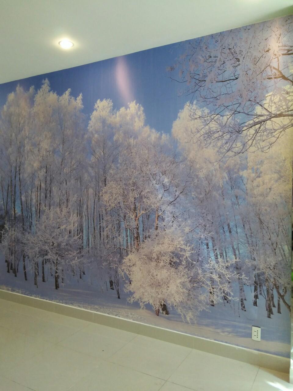 be870f9a59c1b99fe0d0 Rừng thông phủ đầy tuyết trắng xóa