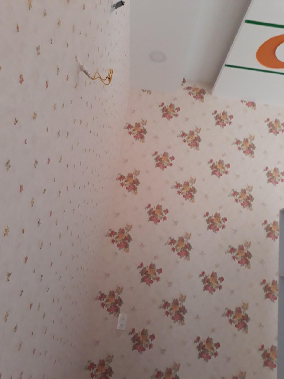 DIO14092 14102 giấy dán tường phòng tân hôn dio 14092 14102